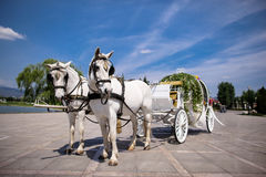 Horse drawn carriage. At wedding Stock Image