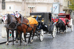 Horse-drawn carriage stock photo
