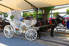 A horse drawn carriage in Aegina, Greece Royalty Free Stock Image