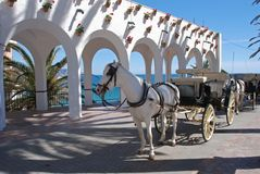 Horse drawn carriage, Balcony of Europe, Nerja. Horse drawn carriages along the Balcony of Europe (Balcon de Europa), Nerja, Costa del Sol, Malaga Province Royalty Free Stock Images