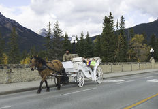 Horse Drawn Carriage in Banff Royalty Free Stock Photos