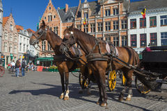 Horse-drawn Carriage in Bruges Stock Photo