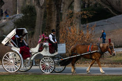 Horse-Drawn Carriage in Central Park Royalty Free Stock Image