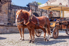Horse drawn carriage - city tour Bamberg Royalty Free Stock Photos