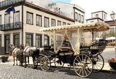 Horse Drawn Carriage on Cobble Stone Street Royalty Free Stock Photo