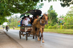 Horse drawn carriage in Cuba Stock Images