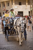 Horse drawn carriage Florence Stock Image