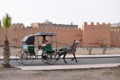 Horse drawn carriage in front of the city wall of Taroudant, Morocco. Palm tree in front Royalty Free Stock Photography