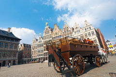 Horse Drawn Carriage Grote Markt Antwerp Royalty Free Stock Image