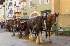 Horse drawn carriage with Gypsy Horse standing outside the buiil Royalty Free Stock Photo
