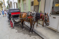 Horse drawn carriage, Havana, Cuba Stock Photo
