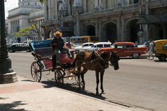 Horse drawn carriage Havana. Horse drawn carriage and driver Havana on the Passeo del MArti near the NAtional Capitol Building Stock Photo