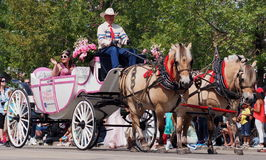 Horse Drawn Carriage In K-Days Parade Stock Photos