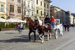 Horse-drawn carriage, Krakow Royalty Free Stock Photos