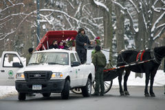 Horse drawn carriage lady argues with park enforcement Royalty Free Stock Image