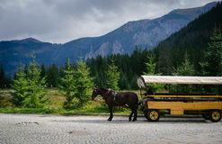 Horse-drawn carriage on mountain road Royalty Free Stock Photos