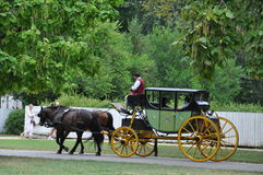 Horse-drawn carriage rides in Williamsburg, Virginia Stock Photography