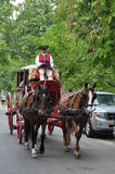 Horse-drawn carriage rides in Williamsburg, Virginia Royalty Free Stock Images