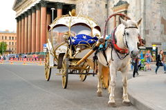 Horse-drawn carriage is on the road against the background of St. Isaac's Cathedral Stock Photos
