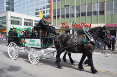 Horse drawn carriage in Saint Patrick's Day Royalty Free Stock Image