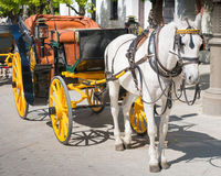 Horse Drawn Carriage, Seville, Andalucia, Spain. A Horse drawn carriage waits for its next customer in a street in Seville, Andalucia, Spain stock images