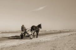 Horse-drawn carriage Royalty Free Stock Photos