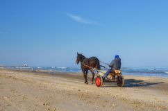 Horse-drawn carriage Royalty Free Stock Image