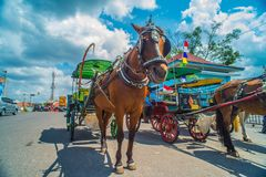 Horse drawn carriage in the streets of Jogjakarta Royalty Free Stock Photo