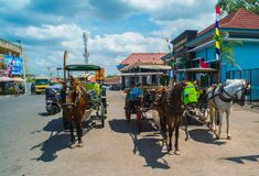 Horse drawn carriage in the streets of Jogjakarta Royalty Free Stock Image