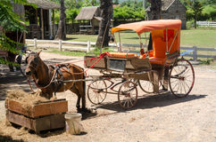 Horse drawn carriage in a sunny and hot day Stock Photo