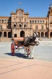 Horse drawn carriage tour donkey at Plaza de Espan Royalty Free Stock Photos