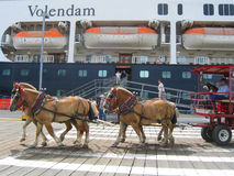 Horse drawn carriage tour in the front of the Volendam Holland America Cruise ship in Ketchikan. KETCHIKAN, ALASKA - JULY 26: Horse drawn carriage tour in the stock image