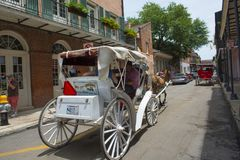 Horse drawn carriage tours in New Orleans Stock Photography