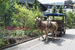 Horse-drawn carriage in Bavaria. Two horses with horse-drawn coach  in Bavaria, Germany Stock Photo