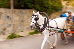The horse-drawn carriages  Royalty Free Stock Image