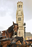 Horse-drawn carriages, Bruges, Belgium Stock Image