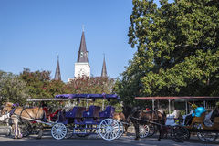 Horse drawn carriages Stock Photo