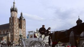 Horse drawn carriages with guides in front of the St. Mary's Basilica in Krakow stock video footage