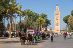Horse-drawn carriages Marrakech Royalty Free Stock Photo