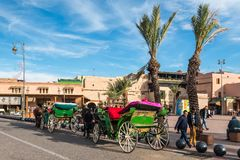 Horse-drawn carriages in Marrakesh, Morocco, Africa royalty free stock photo