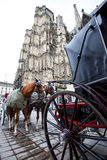 Horse-drawn carriages near the walls of St. Stephen's Cathedral, Royalty Free Stock Photo