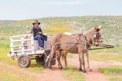 Horse drawn cart at Boemansuitkyk Royalty Free Stock Photos