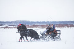Horse-drawn cart on snow Royalty Free Stock Images