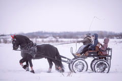 Horse-drawn cart on snow royalty free stock photos