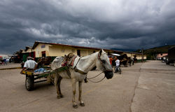 Horse drawn cart, St. Agustin, Colombia. Horse drawn cart in parking lot outside buildings in St. Agustin, Colombia with overcast skies stock image