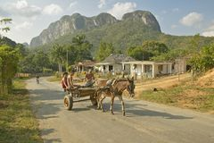 Horse drawn cart traveling in front of house in the Valle de Vi�ales, in central Cuba Stock Image