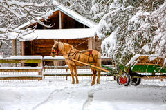 Horse Drawn Cart On Winter Scene Stock Photography