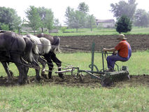 Horse Drawn Disk Harrow. Farming the old way, horse drawn implements stock image