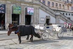 Horse-drawn Fiacre Αυστρία Βιέννη Στοκ εικόνα με δικαίωμα ελεύθερης χρήσης