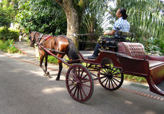 Horse drawn Open Carriage Royalty Free Stock Images